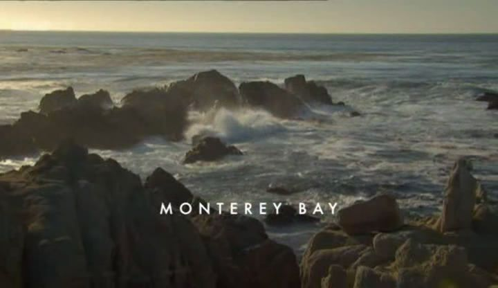 Monterey Bay (Nature's Microworlds Part 4)