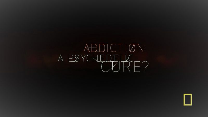 Addiction A Psychedelic Cure