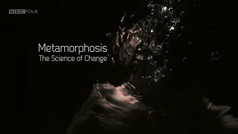Metamorphosis: The Science of Change