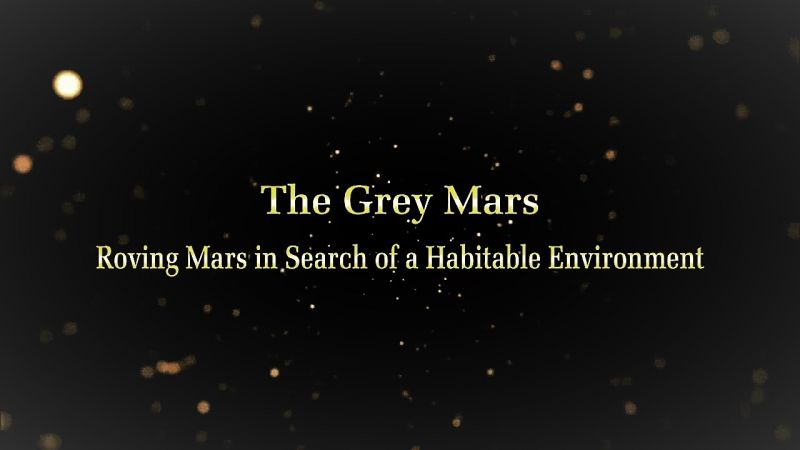 The Grey Mars