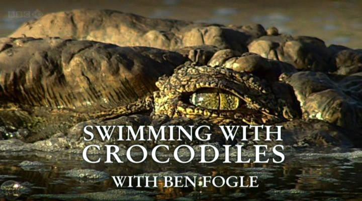 BBC纪录片《与鳄鱼一起游泳》(全2集)