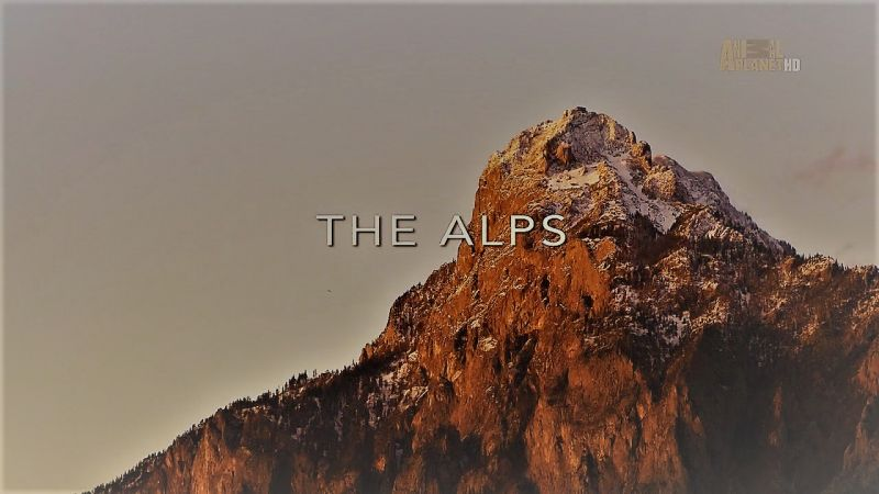 The Alps (Wildest Europe 3/5)