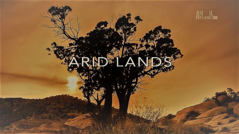Arid Lands (Wildest Europe 5/5)