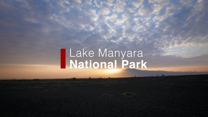 Lake Manyara: National Park