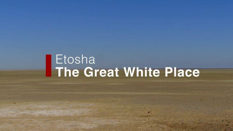 Etosha: the Great White Place