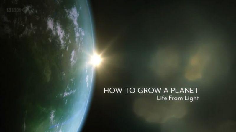 Grow%202.jpg