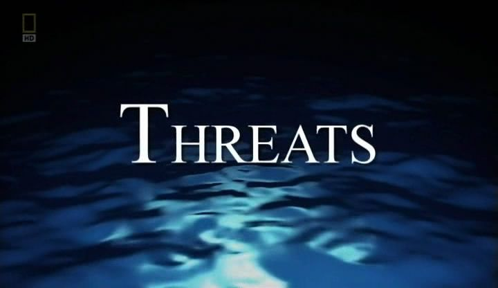 Threats (Life of Oceans 4/4)