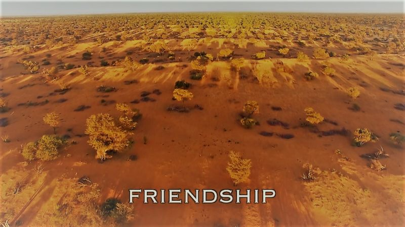 Friendship (Spy in the Wild 3/5)