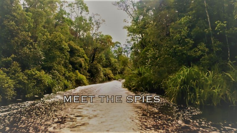 Meet the Spies (Spy in the Wild 5/5)