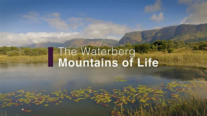 The Waterberg Mountains of Life