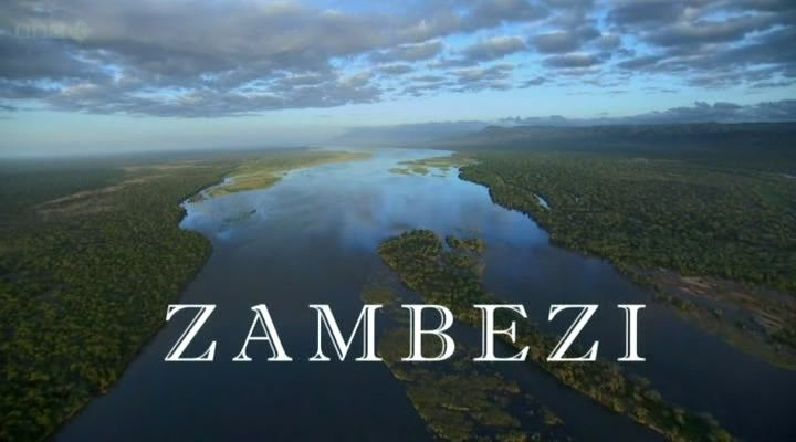 Zambezi (Natural World)