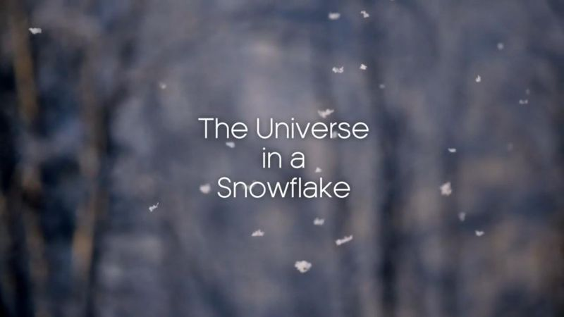 The Universe in a Snowflake
