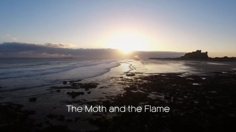 The Moth and the Flame (Forces of Nature With Brian Cox Part 3)