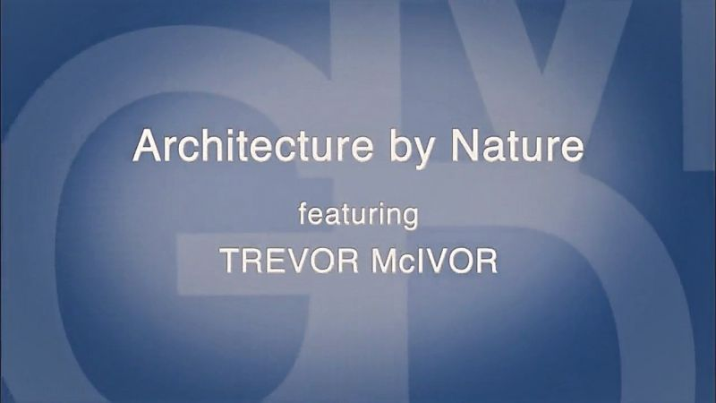 Architecture by Nature