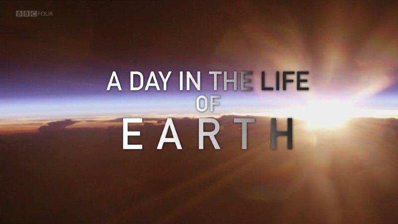 纪录片部落-纪录片从业者门户:BBC - 地球生命中的一天(2018年)