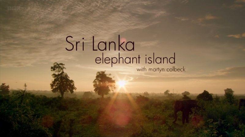Sri Lanka: Elephant Island