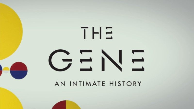 Poster of PBS - The Gene: An Intimate History (2020)