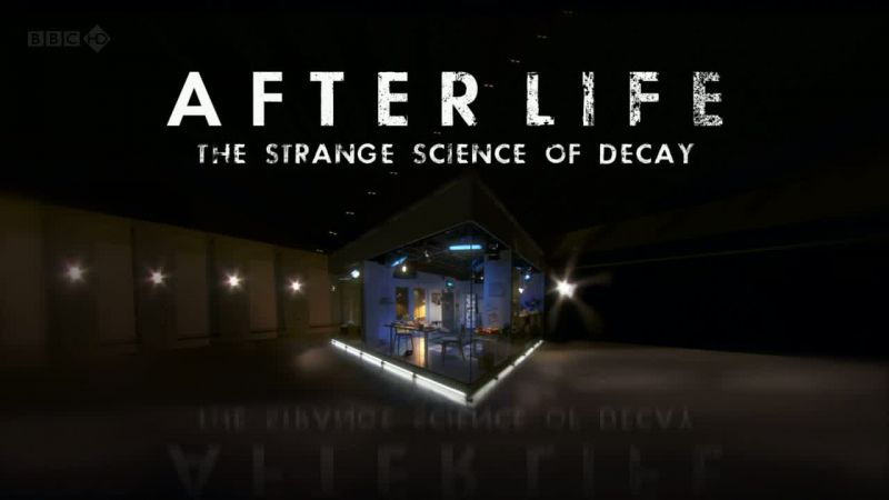 After Life: The Strange Science of Decay