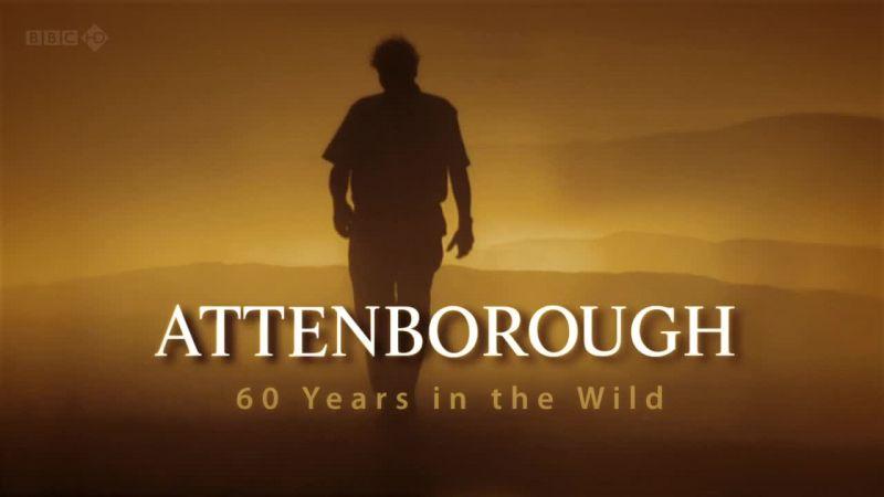 السلسلة المميزة Attenborough Years Wild