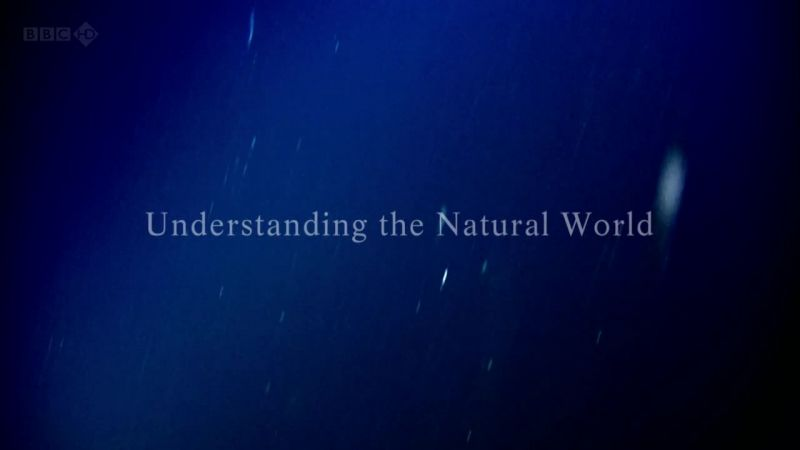 Understanding the Natural World (Attenborough: 60 Years in the Wild 2/3)