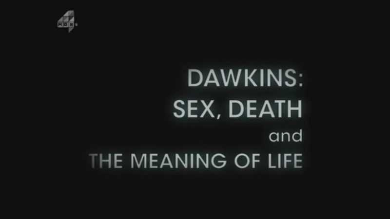 Sin (Dawkins: Sex Death and the Meaning of Life Part 1)