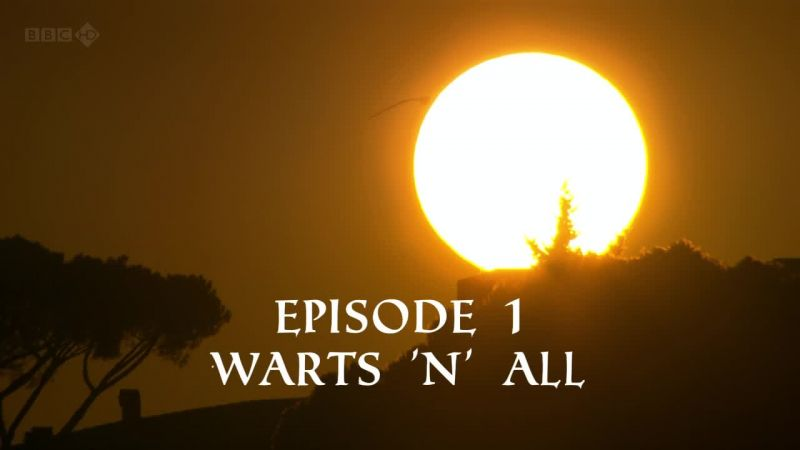 Warts 'n' All (The Treasures of Ancient Rome 1/3)