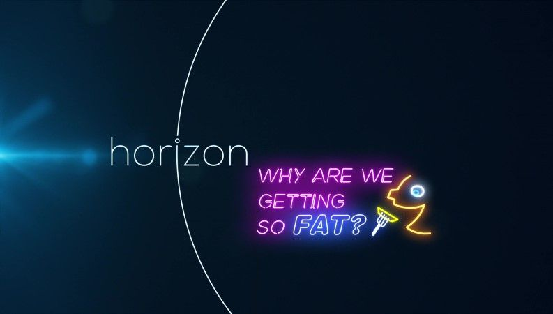 Why are We Getting So Fat? (Horizon)