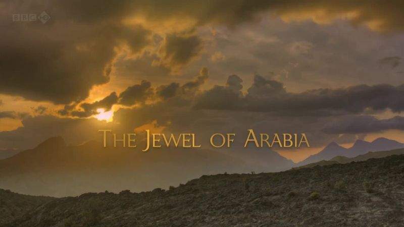 The Jewel of Arabia (Wild Arabia 2/3)