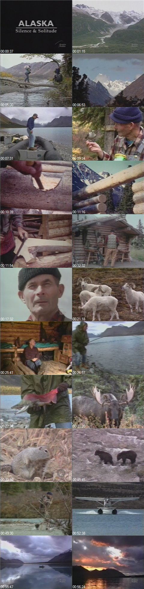 Alaska: Silence and Solitude XviD mp3 (forums mvgroup org) preview 1