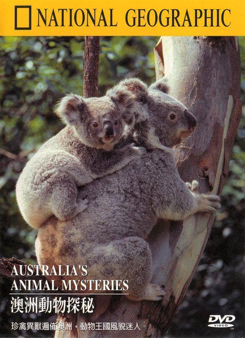 National Geographic Australias Animal Mysteries XviD AC3 MVGroup Forum avi preview 0