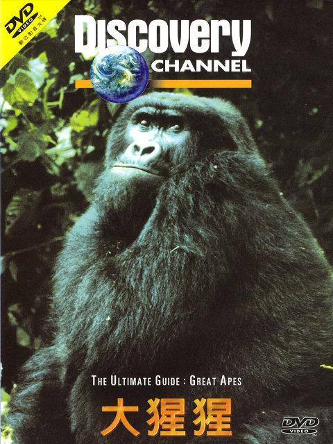 Discovery The Ultimate Guide Great Apes DivX AC3  org avi preview 0