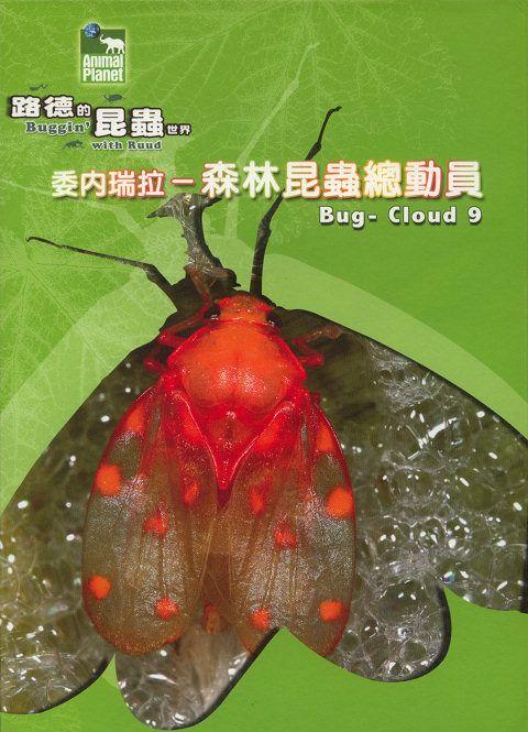 Buggin with Ruud Bug Cloud 9 XviD AC3 EN CH MVGroup org avi preview 0