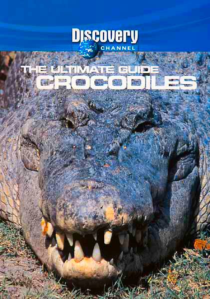 DSC Crocodiles: The Ultimate Guide DivX mp3 (forums mvgroup org) preview 0