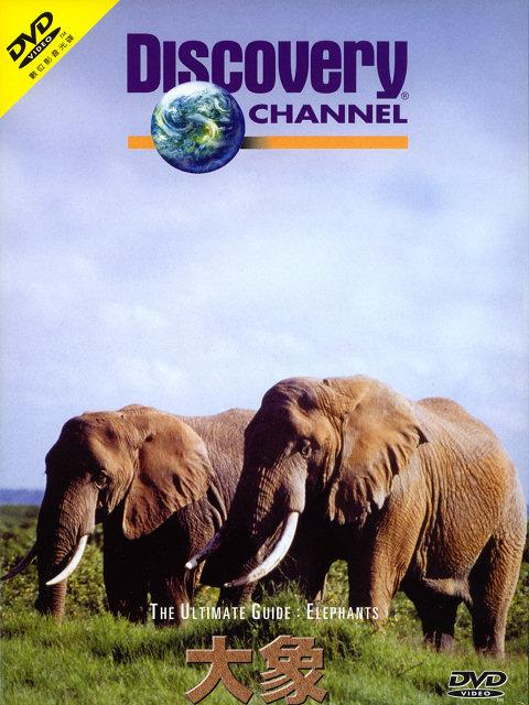 Discovery The Ultimate Guide Elephants DivX AC3  org avi preview 0