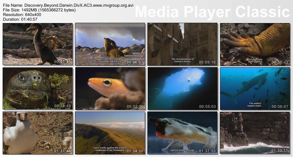 Discovery Galapagos Beyond Darwin DivX AC3  org avi preview 1