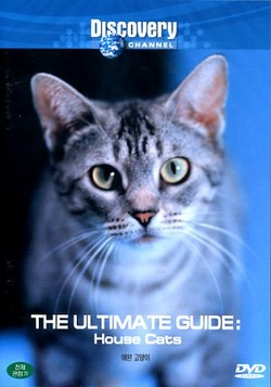 DSC House Cats: The Ultimate Guide DivX mp3 (forums mvgroup org) preview 0