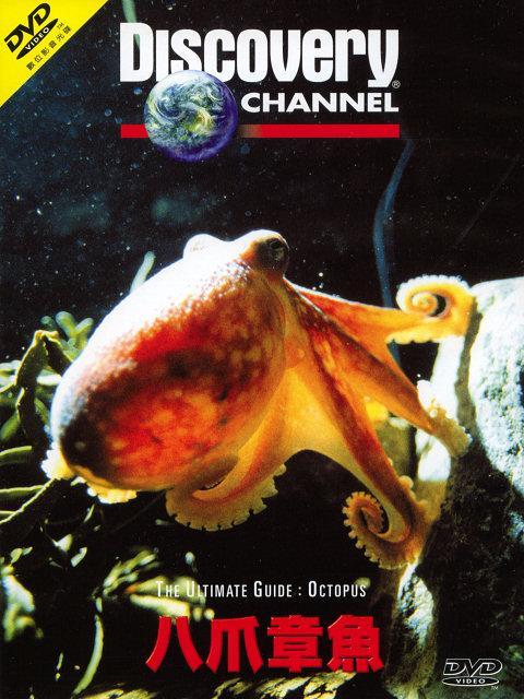 Discovery The Ultimate Guide Octopus DivX AC3  org avi preview 0
