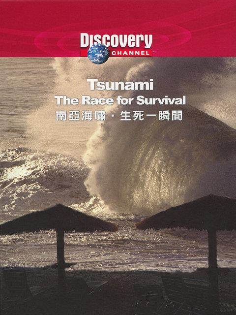 Discovery Tsunami The Race for Survival DivX AC3  org avi preview 0