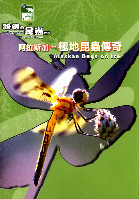 Buggin' with Ruud: Alaskan Bugs on Ice DivX AC3 ( preview 0