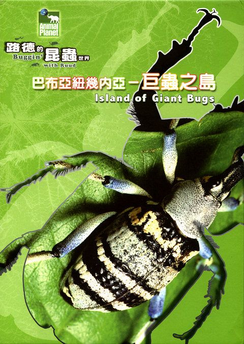 Buggin with Ruud Island of Giant Bugs XviD AC3 MVGroup org avi preview 0