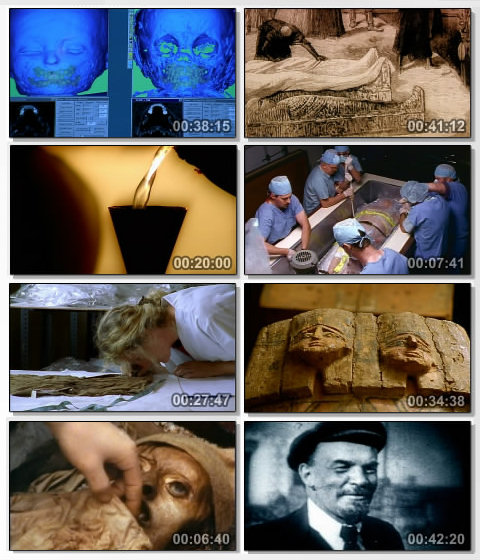 DSC Mummies: The Ultimate Guide DivX Dual Eng /Ch  AC3 ( preview 1
