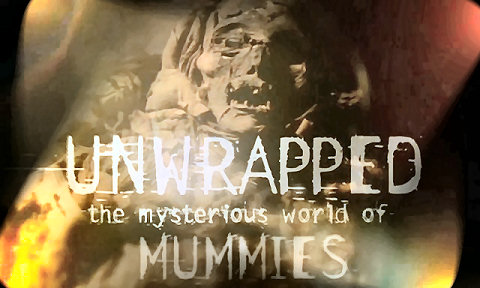 DSC Unwrapped: The Mysterious World of Mummies 3of3 DivX AC3 dual audio ( preview 0