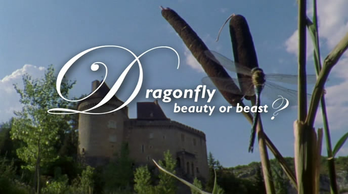 Wildlife on One: Dragonfly   Beauty Or Beast? (22 Dec 2004) [DVB (xvid)] preview 0