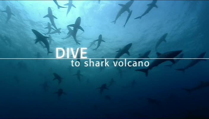 BBC Dive To Shark Volcano XviD AC3 avi preview 0